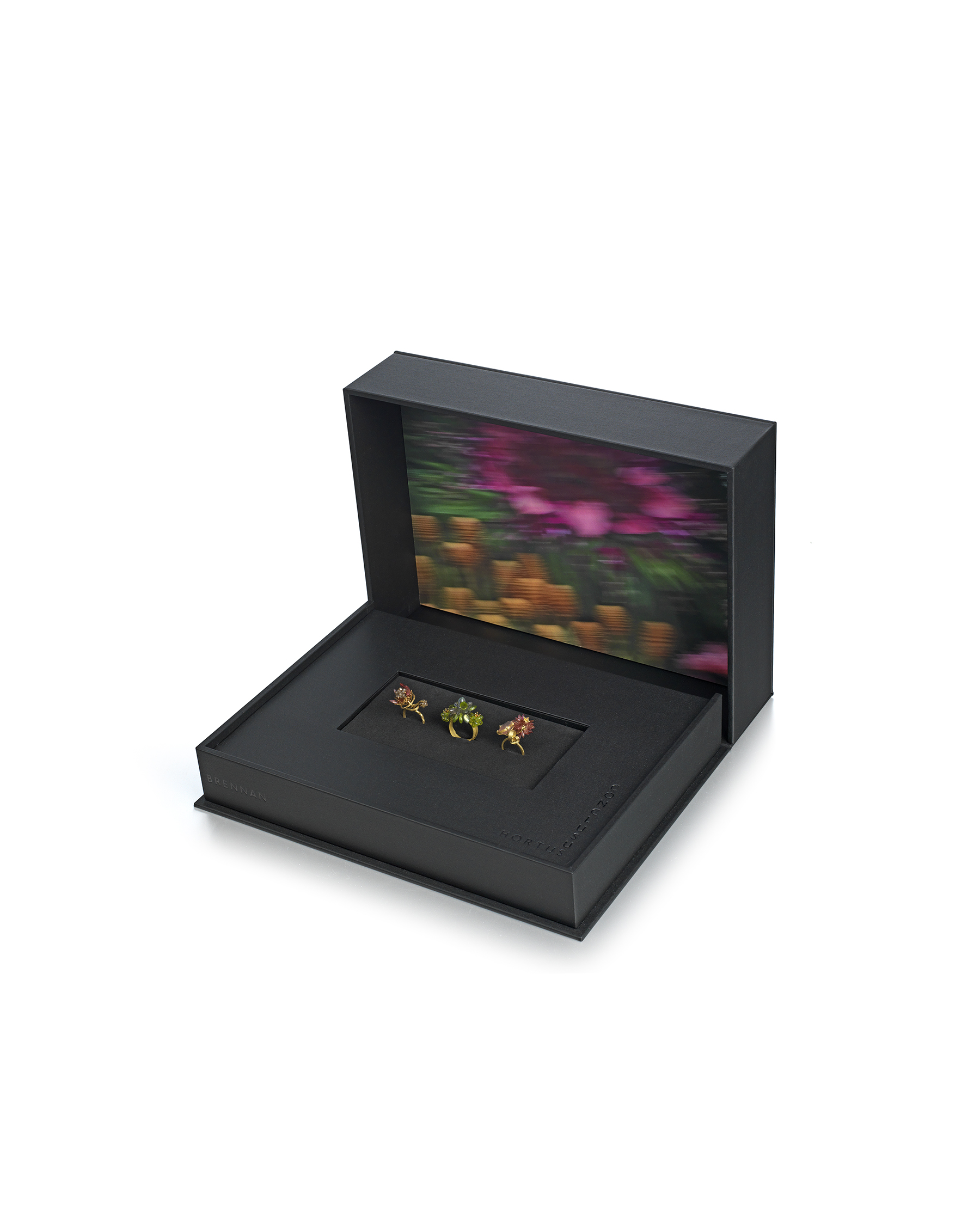 3 Cocktail Rings displayed in a beautifully presented Black Solander Box